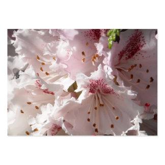 Pétalo rosado de la flor del rododendro en el cier tarjetas de visita