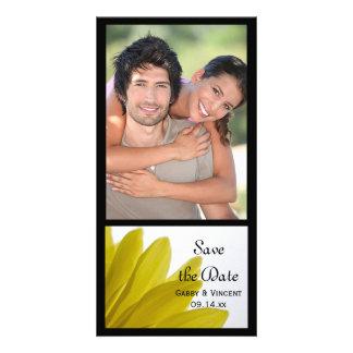 Pétalos amarillos de la flor de la margarita que plantilla para tarjeta de foto