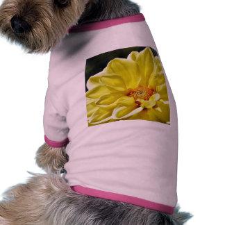 Pétalos amarillos de las flores camisa de perrito