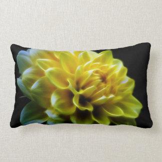 Pétalos amarillos y negros de la flor de la dalia almohada