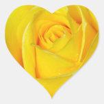 Pétalos color de rosa amarillos hermosos pegatina en forma de corazón