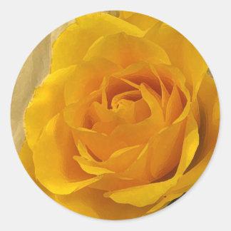 Pétalos color de rosa amarillos pegatina redonda