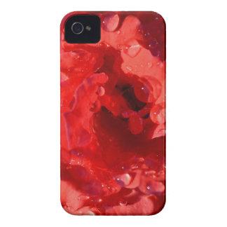 Pétalos color de rosa miniatura rojos con iPhone Case-Mate iPhone 4 Fundas