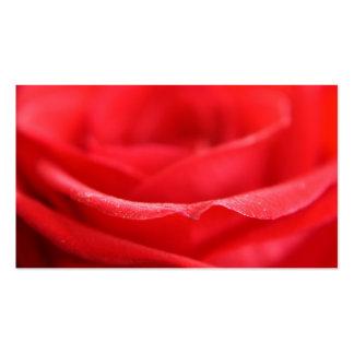 Pétalos color de rosa rojos plantillas de tarjetas de visita