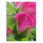 Pétalos color de rosa rosados del brote cuadernos