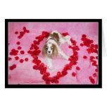 Pétalos color de rosa y tarjeta arrogante del perr