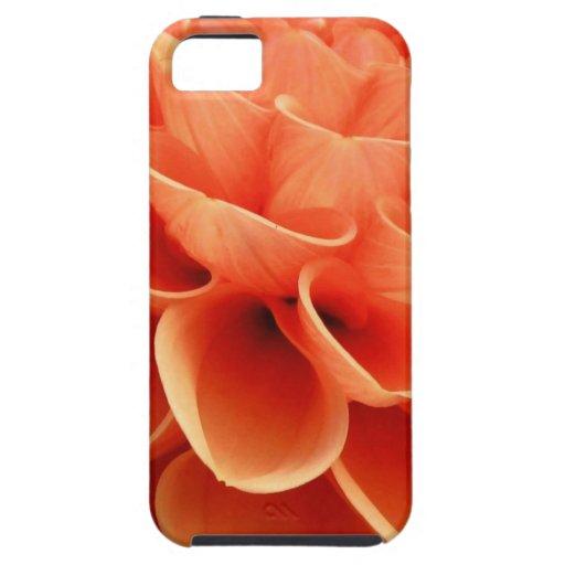 Pétalos coloreados melocotón hermoso de la flor de iPhone 5 Case-Mate carcasas