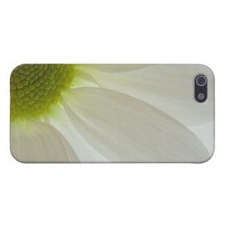 Pétalos de la margarita blanca iPhone 5 protectores
