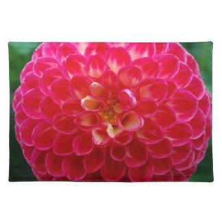 Pétalos de las rosas fuertes manteles individuales