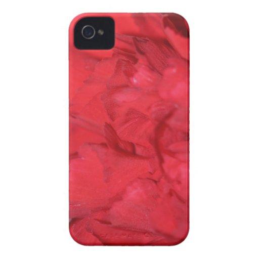 Pétalos del clavel macros iPhone 4 Case-Mate carcasa