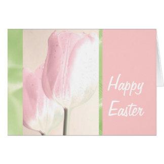 Pétalos del oído del conejito de Pascua PinkTulips