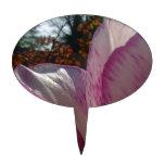 Pétalos del tulipán de color de malva decoraciones para tartas