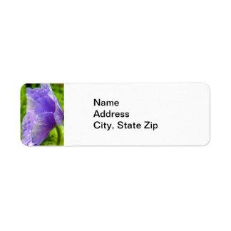 Pétalos que lloran de la flor púrpura etiquetas de remite
