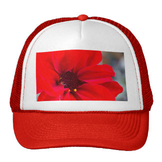 Pétalos rojos gorra