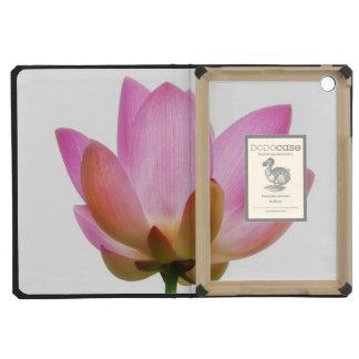 Pétalos rosados de la flor de OM Lotus