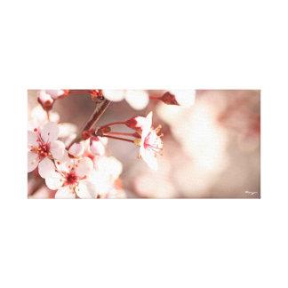 Pétalos rosados impresión en lienzo estirada