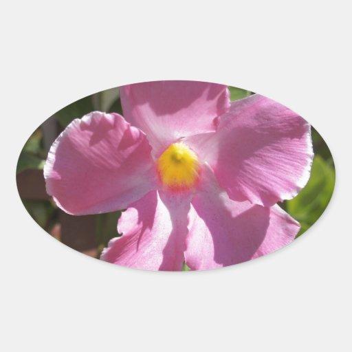 Pétalos rosados pegatina óval
