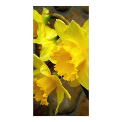 Pétalos soleados tarjeta fotografica personalizada