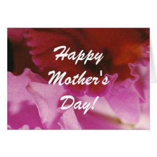 Petalpalooza • Pink • Mother's Day Card