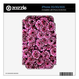 Petals Flower Rose Pink Love Soft Gift Wonderful G iPhone 3G Skins