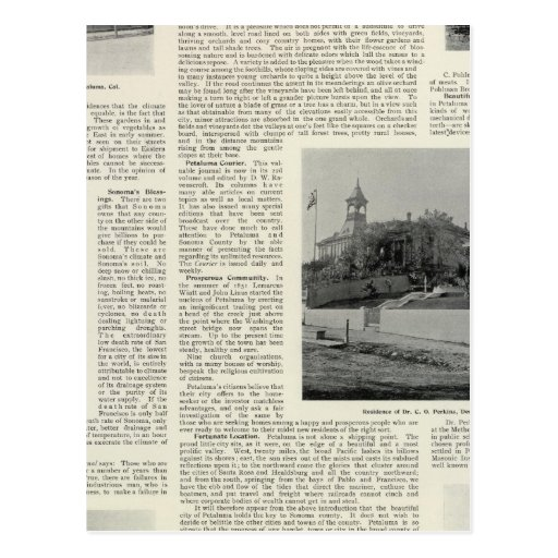 Petaluma Residences, California Postcards