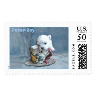 Peter-Boy Postage