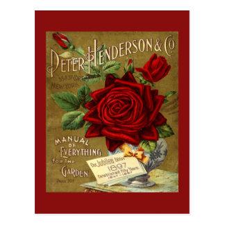 Peter Henderson y anuncio del catálogo del jardín Tarjeta Postal