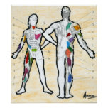 Peter Max style signed muscle chart drawing Poster