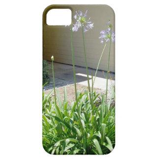 Peter Pan Agapanthus Blooming iPhone SE/5/5s Case