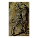 Peter Paul Rubens - Lioness Posters