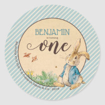 Peter Rabbit | Baby's First Birthday Classic Round Sticker