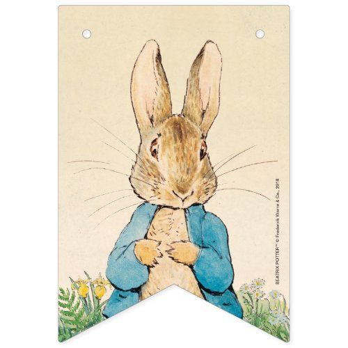 Peter Rabbit  Boy Baby Shower Bunting Flags