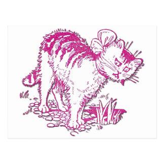 Peter the Cat Postcard