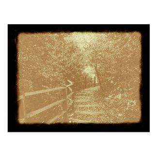Peterson Park, Northport, Michigan - Postcard