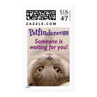 Petfinder.com Stamp