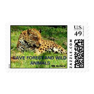 Petición de ahorrar el bosque y animales salvajes