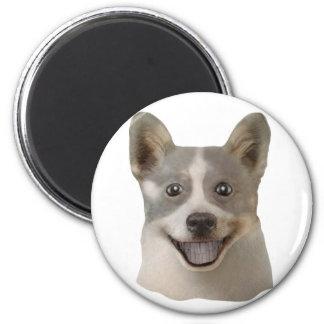 Petición de los productos de Mult del perro (image Imán Redondo 5 Cm