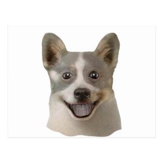 Petición de los productos de Mult del perro Tarjetas Postales