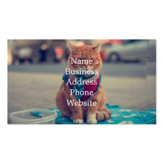 Petición que se sienta del gato beige del lazo tarjetas de visita