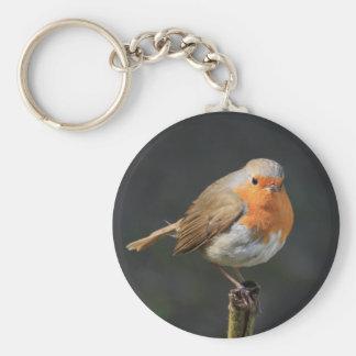 Petirrojo alegre llavero redondo tipo pin