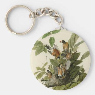 Petirrojo americano llavero redondo tipo pin