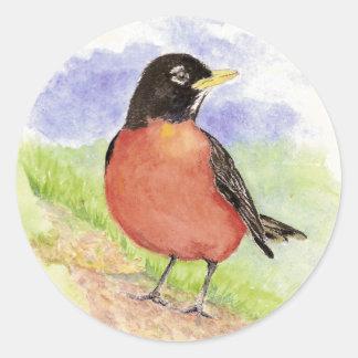 Petirrojo americano, pájaro, naturaleza, fauna, pegatina redonda