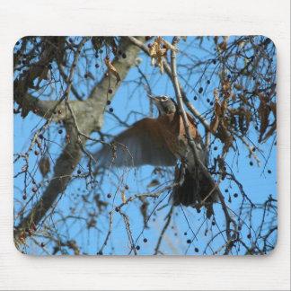 Petirrojo de vuelo mousepads
