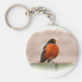 Petirrojo del americano del pájaro llavero redondo tipo pin