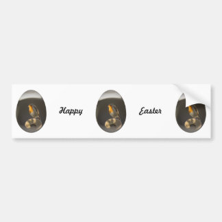 petirrojo del huevo de Pascua Pegatina Para Auto