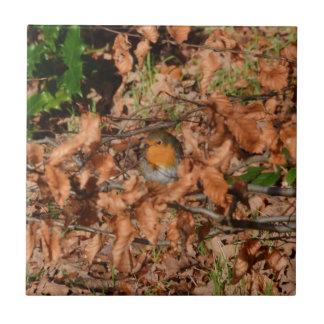 Petirrojo en el bosque teja cerámica