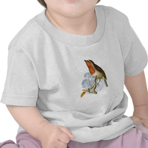 Petirrojo europeo - rubecula del Erithacus Camisetas