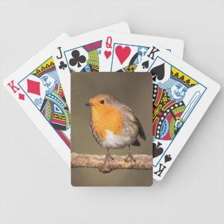 Petirrojo Redbreast Baraja Cartas De Poker