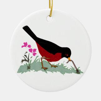 Petirrojo rojo de la primavera que consigue un gus