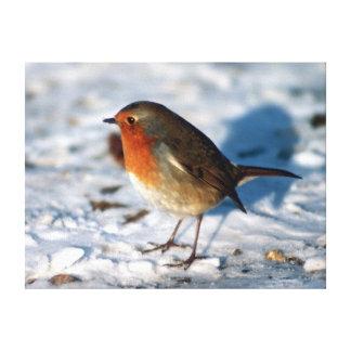 Petirrojo rojo en la nieve lona envuelta para galerías
